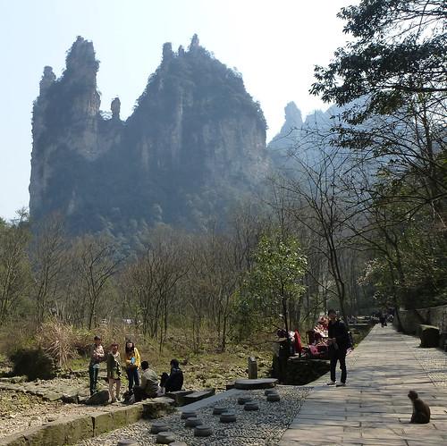 Hunan13-Parc-Ruisseau du Fouet d'or (98)