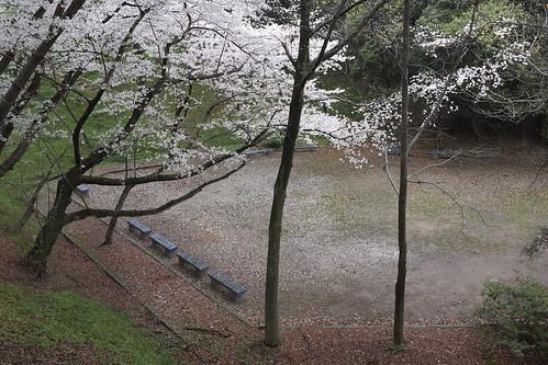 福岡市中央区