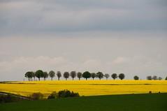 Burgundy Landscape - Photo of Boux-sous-Salmaise
