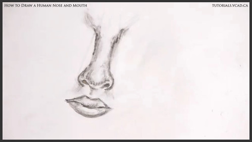 learn how to draw a human nose and mouth 016