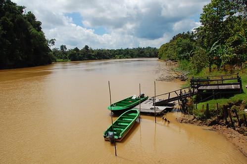 Kinabatangan River - Sabah, Borneo