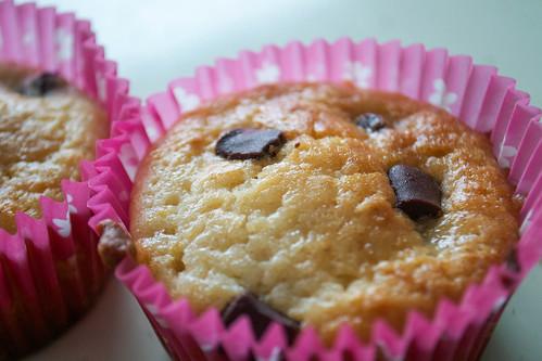 lemon and plain chocolate muffins