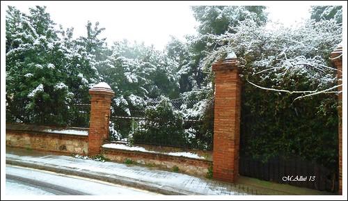 Nieve by Miguel Allué Aguilar