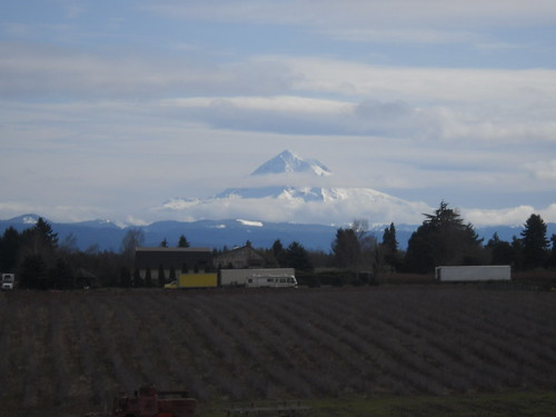 Mount Hood from Ritchey Road