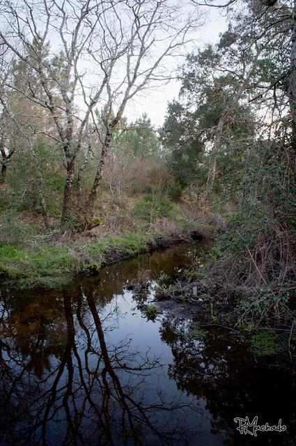 Rib. Lagoa das Eguas