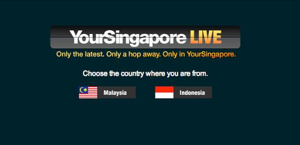 www.yoursingapore.com.png