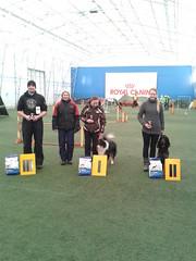 TAKO agility võistlus 09.03 - 10.03.2013