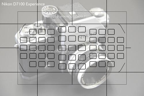 Nikon D7100 autofocus viewfinder 1.3x crop af autofocus points