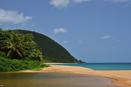 blue sea summer sun france beach sand palm palmtree caribbean guadeloupe grandanse