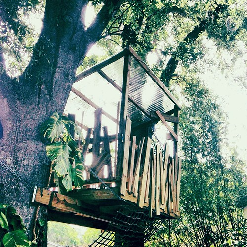 Treehouse (76/365) by elawgrrl