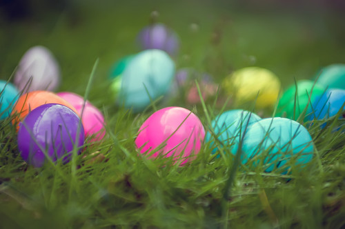 easter eggs in grass by DigiDreamGrafix.com