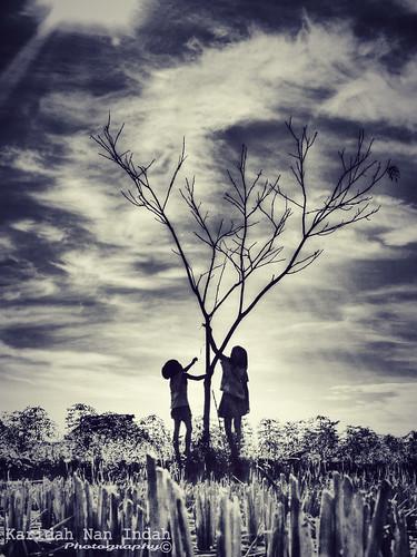 Dry Season by Karidah Nan Indah