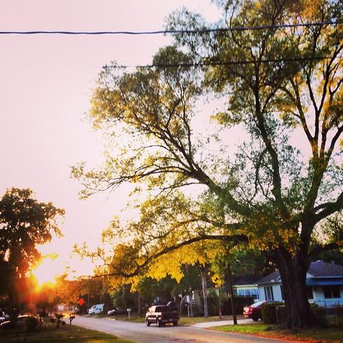 Dawn (81/365) by elawgrrl