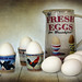 Fresh Eggs for Breakfast by sminky_pinky100 (In and Out)