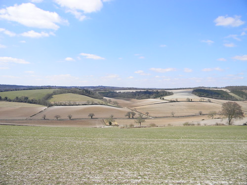 Fields, Stonor valley