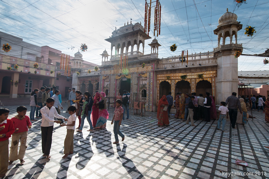 Красный храм в Биканер. Индия