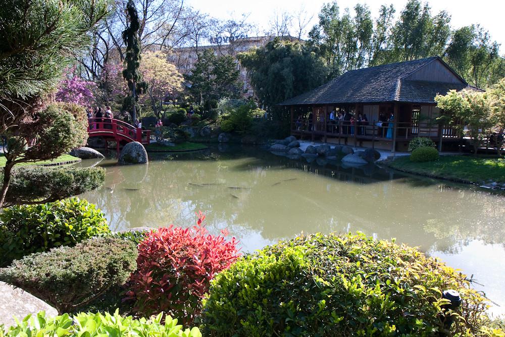 Jardin japonais#5 - Compans Caffarelli - Toulouse
