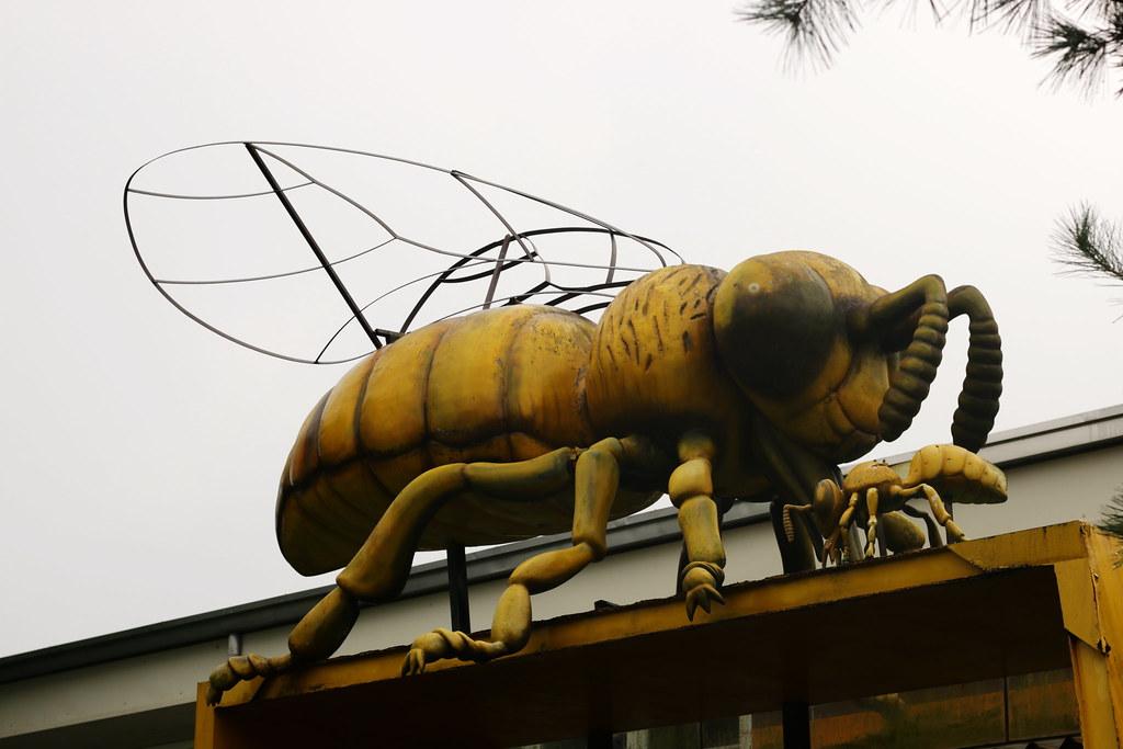 古坑蜜蜂故事館 (4)