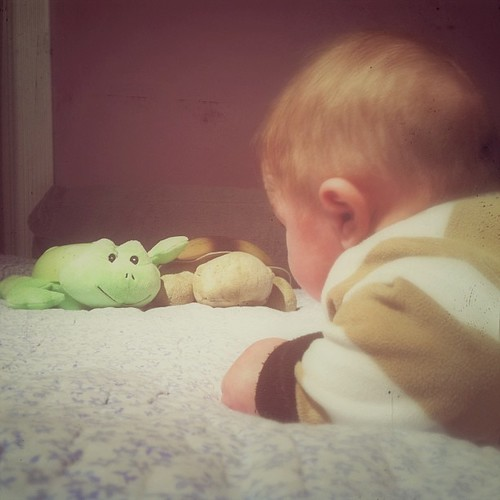 2/8 Child's point of view. #cmglimpse He's getting used to tummy time; good thing, because I don't want to roll him over every time! #baby #infant #child #dreamlight