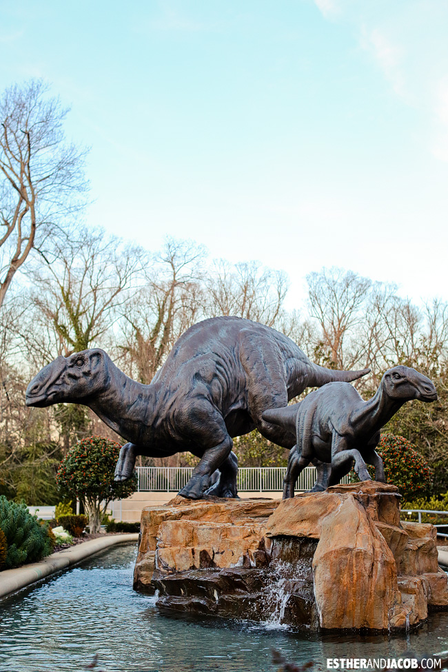 Fernbank Museum of Natural History | Tourists at Home Atlanta Edition