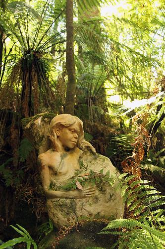 girl among the ferns