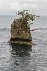 Costa Rica Febrer 2013