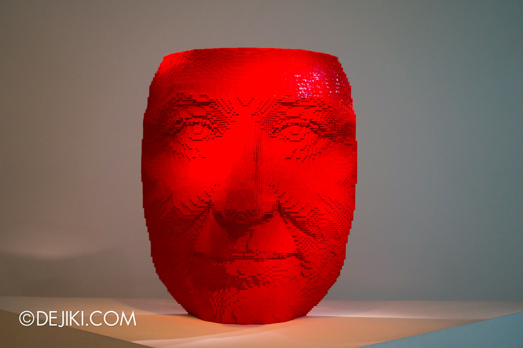 Art of The Brick - Face