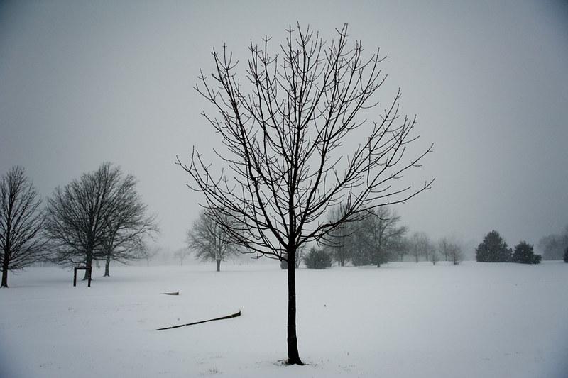 022013 002a snow day ak