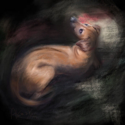 iPad Art: Henry