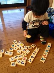 ひらがなブロックで遊ぶとらちゃん 2013/2/25