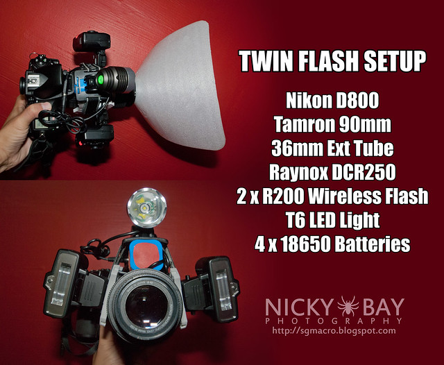 Twin Flash Setup - DSC_8081