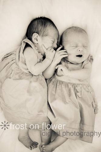 20130224-newborn-241