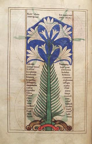 009-Liber floridus – siglo XII- © Herzog August Bibliotek