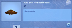 Red Berry Bean