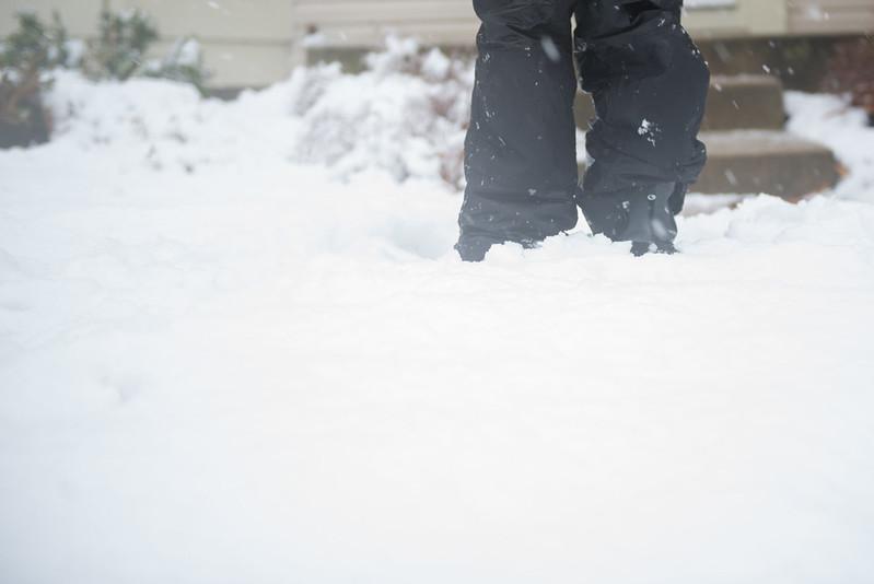 SnowDay-6512