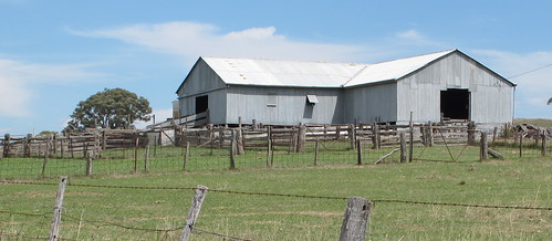 Rural shearing shed NSW