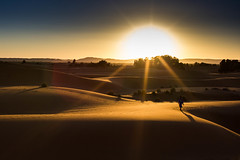 [フリー画像素材] 自然風景, 砂漠, 朝焼け・夕焼け, レンズフレア, サハラ砂漠, 風景 - モロッコ ID:201303280800