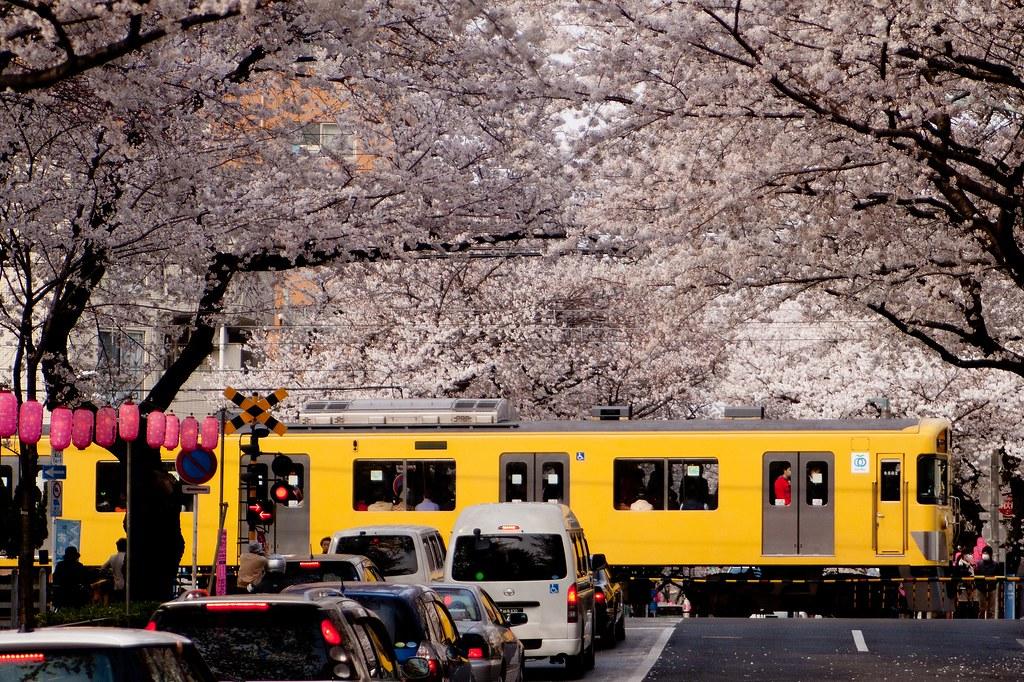 Seibu Series N2000