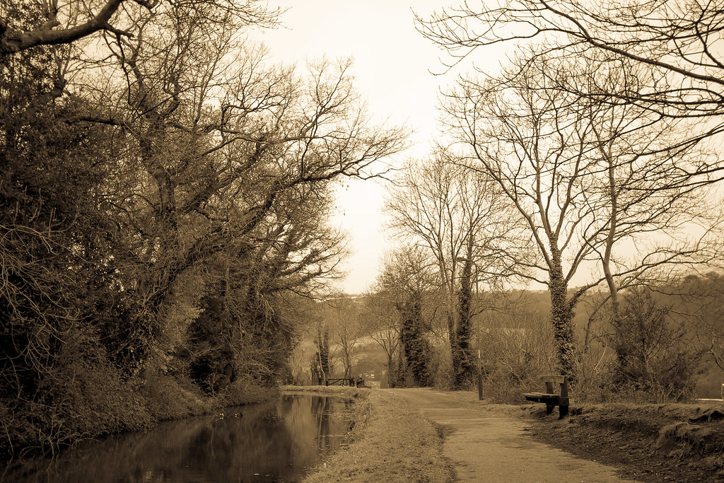 The canal in early Spring.