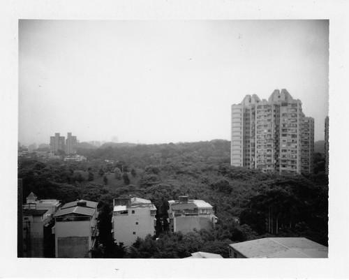 Polaroid250_0001