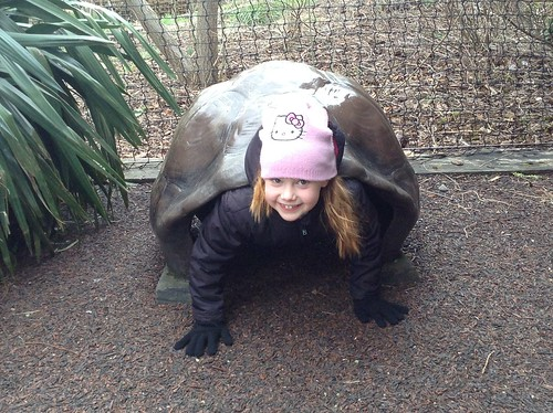 London Zoo human turtle