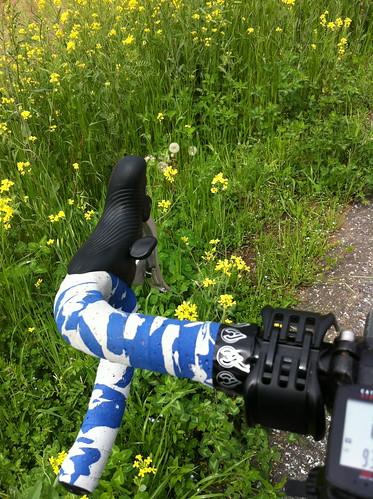 2012年5月1日荒川サイクリングロード
