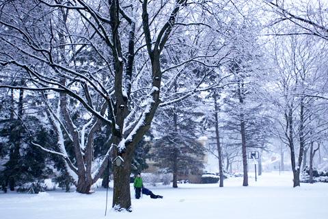 snowingmore1-0213