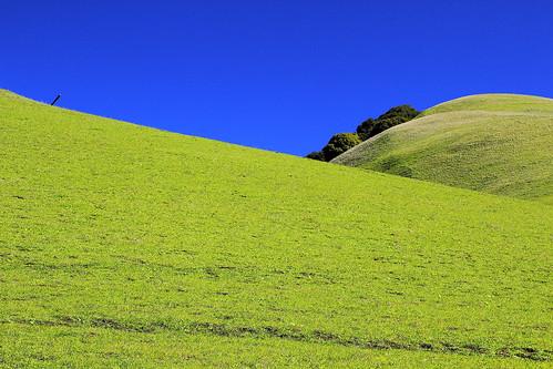 hills sky grass landscape drycreekregionalpark gavindrycreekregionalpark drycreekpioneerregionalpark hayward california eastbayregionalparkdistrict sanfranciscobayarea nature usa abelalcantarphotography ebparksok