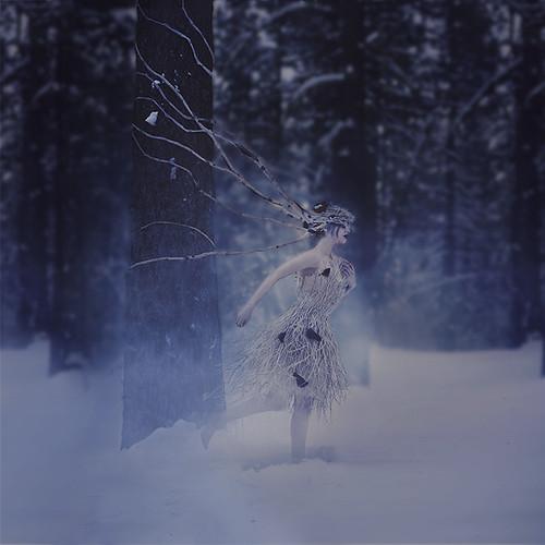 the hostile branches of whistling fog forest