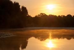 Brume sur l'étang Laveyssière