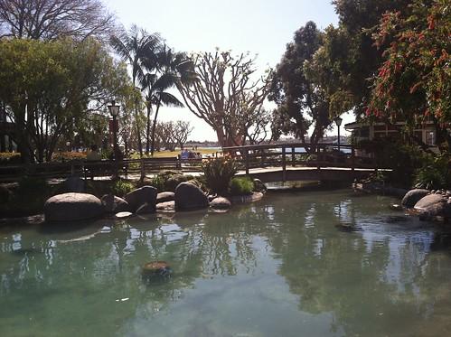Seaport Village Pond