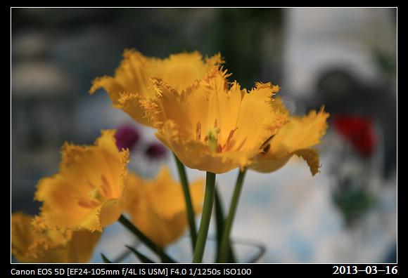 20130316_MFFarm101