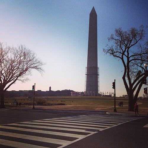 Halo,Washington DC. Day_005