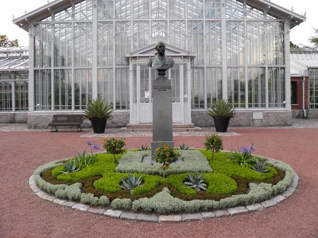 Зимний сад // Winter garden